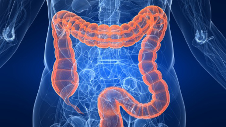 Five Reasons Not To Get A Colonoscopy Columbia University Department Of Surgery